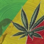 experiencias-marihuana1-150x150