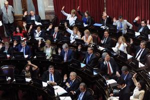 Por ley, establecen el 7 de octubre como el Día Nacional de la Identidad Villera